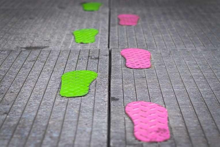 De grønne fodspor. Foredrag nudging. heldagsforedrag. Få værktøjerne til at skabe adfærdsforandringer. Start med et foredrag: De grønne fodspor