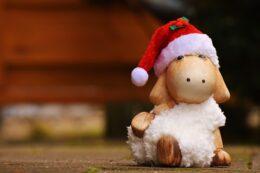 Julenudging. Julearrangement. Foredrag, kursus. Nudging og adfærdsdesign.